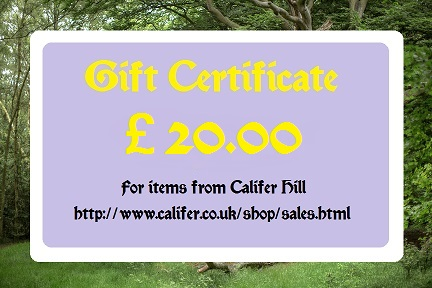 �20 Gift certificate